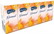 Papírové kapesníčky Big Soft Normal 10x10ks