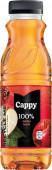 Cappy jablko 100% 0,33l - PET