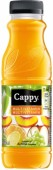 Cappy multivitamín 0,33l - PET