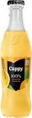 Cappy pomeranč 100% 0,25l - sklo